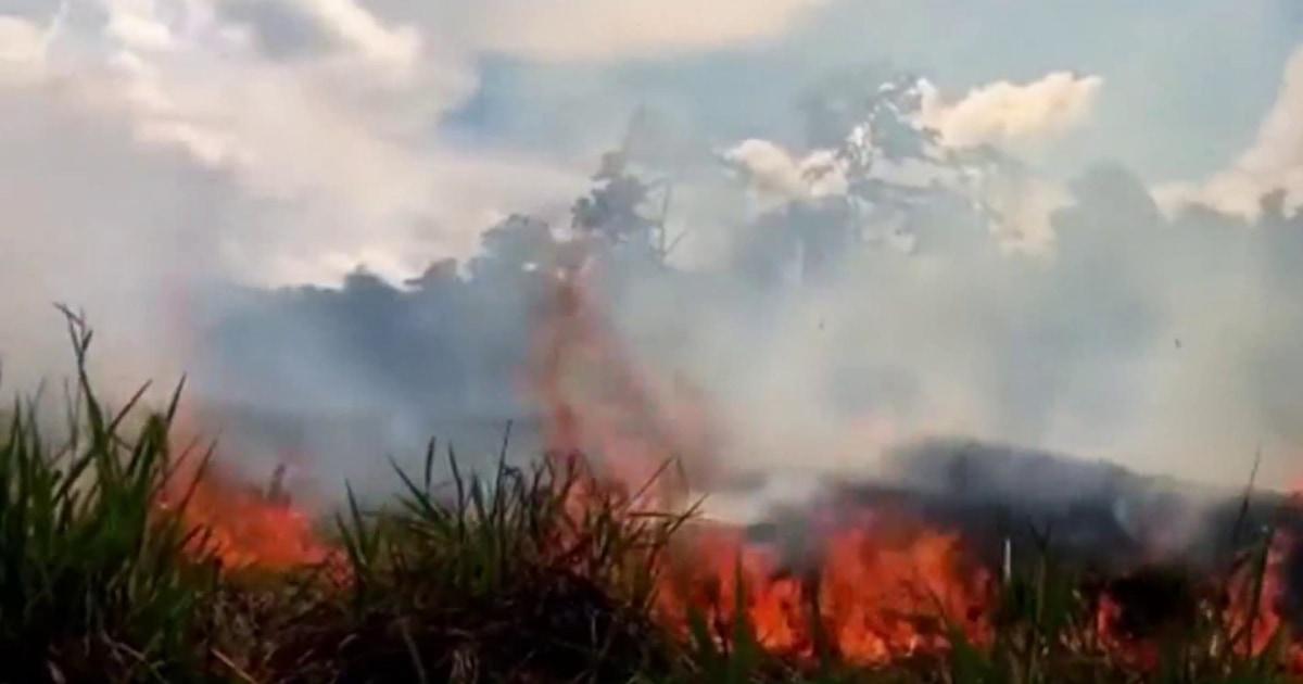 Amazon rainforest burning at record rates