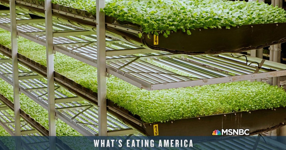 Andrew meets with entrepreneurs creating a farm of the future