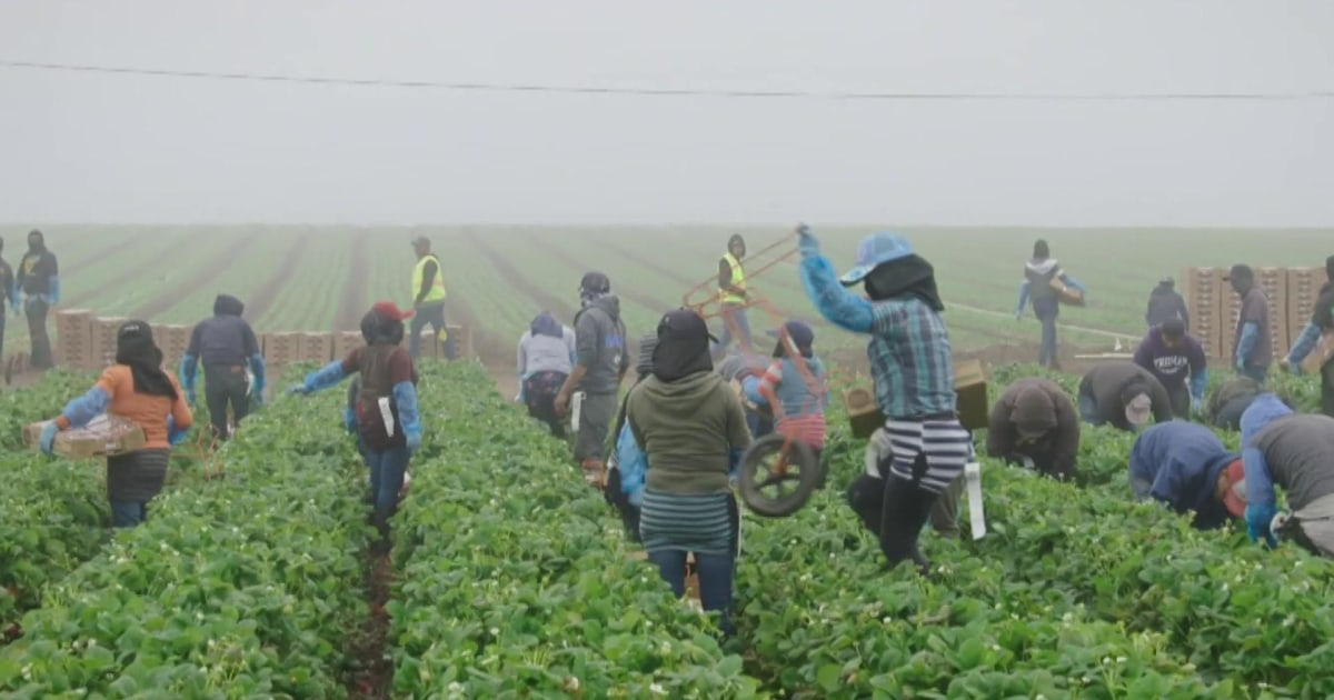 'What's Eating America' examines immigration via lens of food