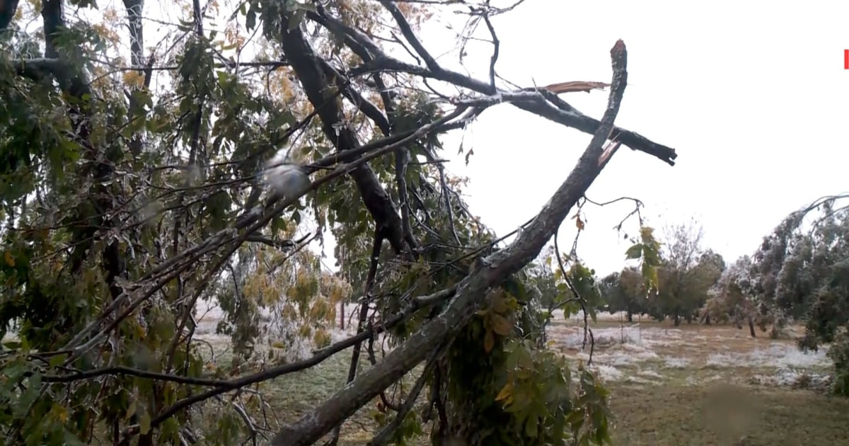 Fall ice storm damages farm in Oklahoma