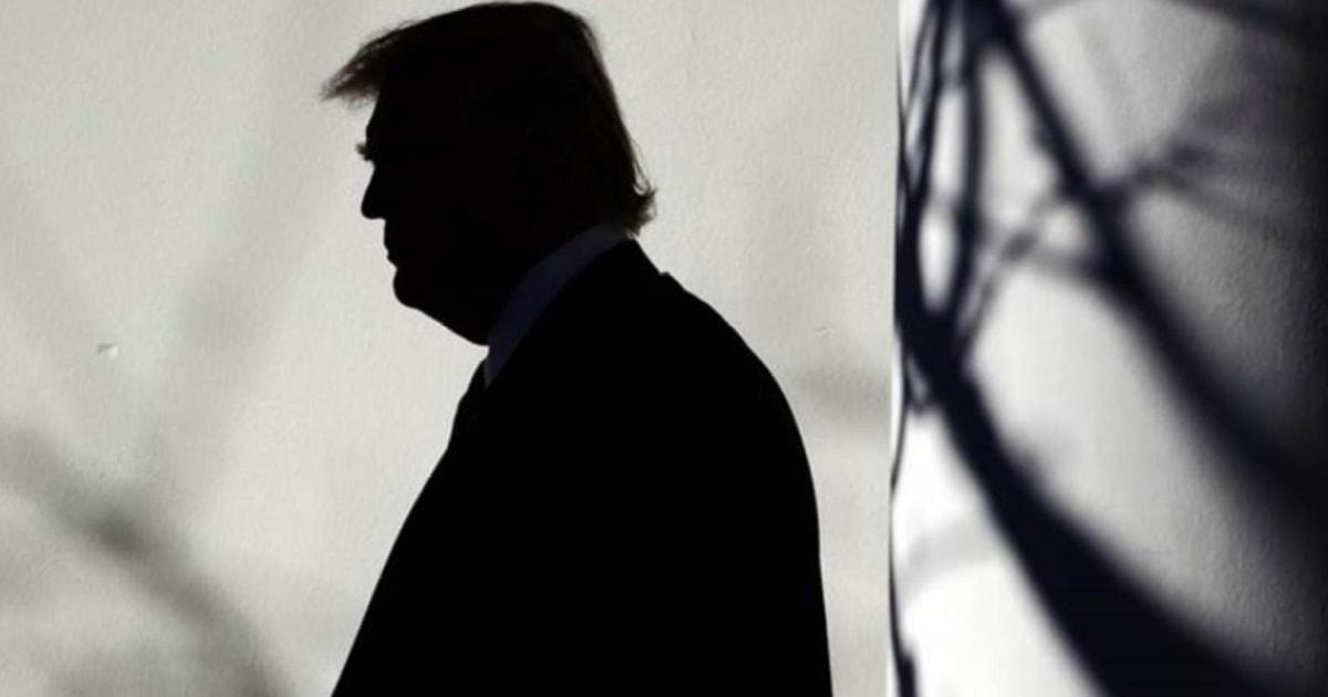 Trump called Karl Rove a RINO. Michael Steele says, 'Pot, meet kettle.'