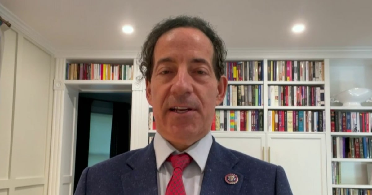 """Rep. Raskin: """"This was a coup organized BY the President against the VP and against Congress"""""""