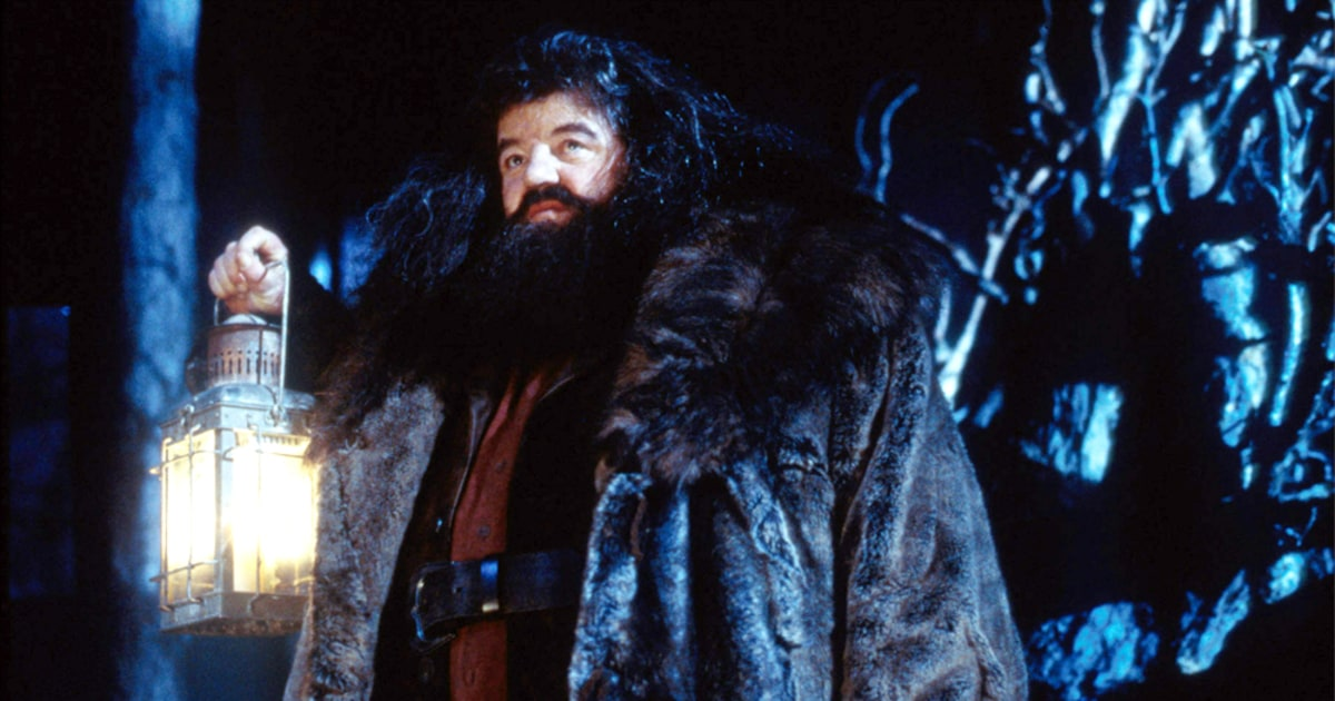 Chat Flashback The Cinematic Debut Of Rubeus Hagrid For the second film he is notable for having played harry potter operating under the guise of goyle's appearance. cinematic debut of rubeus hagrid