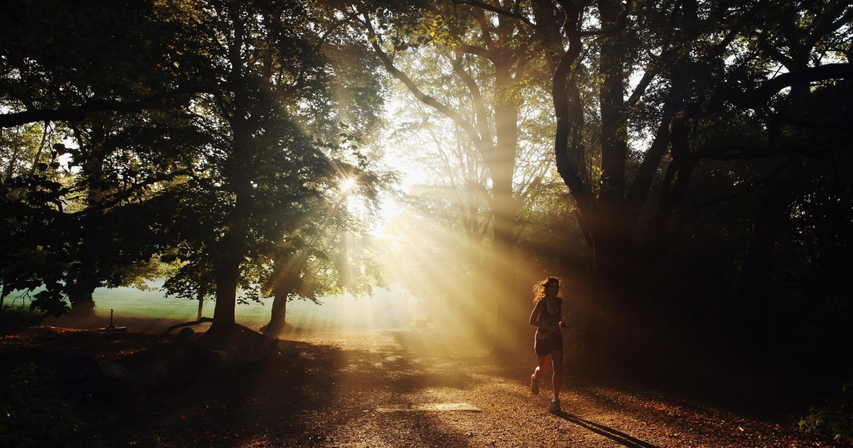 Morning Light >> Morning Light Could Be Key To Leaner Physique Study Finds