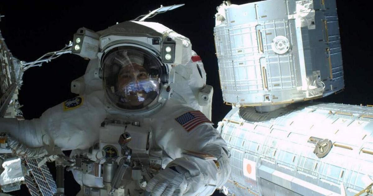 Spacewalk Selfie! NASA Astronaut Shares Self-Portrait