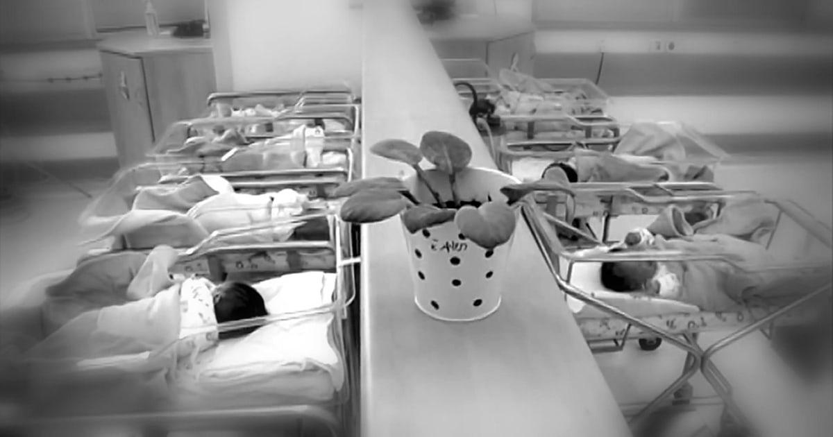 Twin tingkat kelahiran adalah level terendah dalam satu dekade