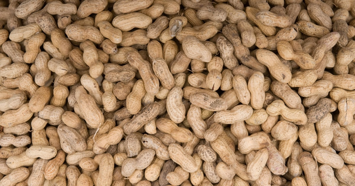 Peanut allergy treatment may trigger dangerous reaction at home, study finds
