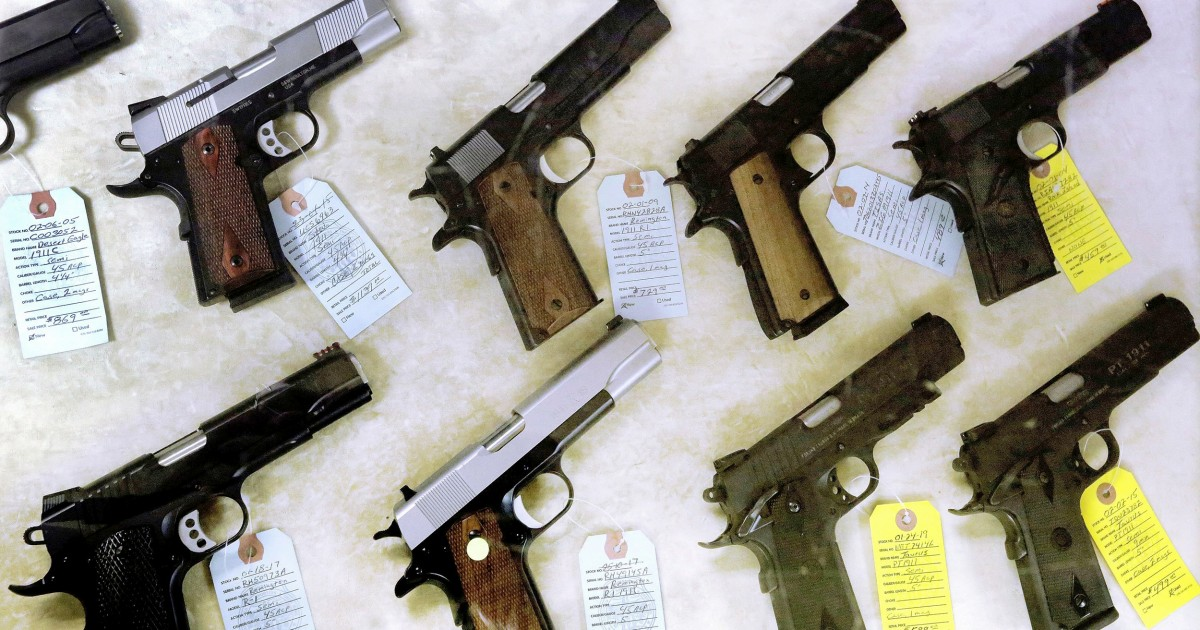 House passes NRA-backed 'concealed carry' gun bill