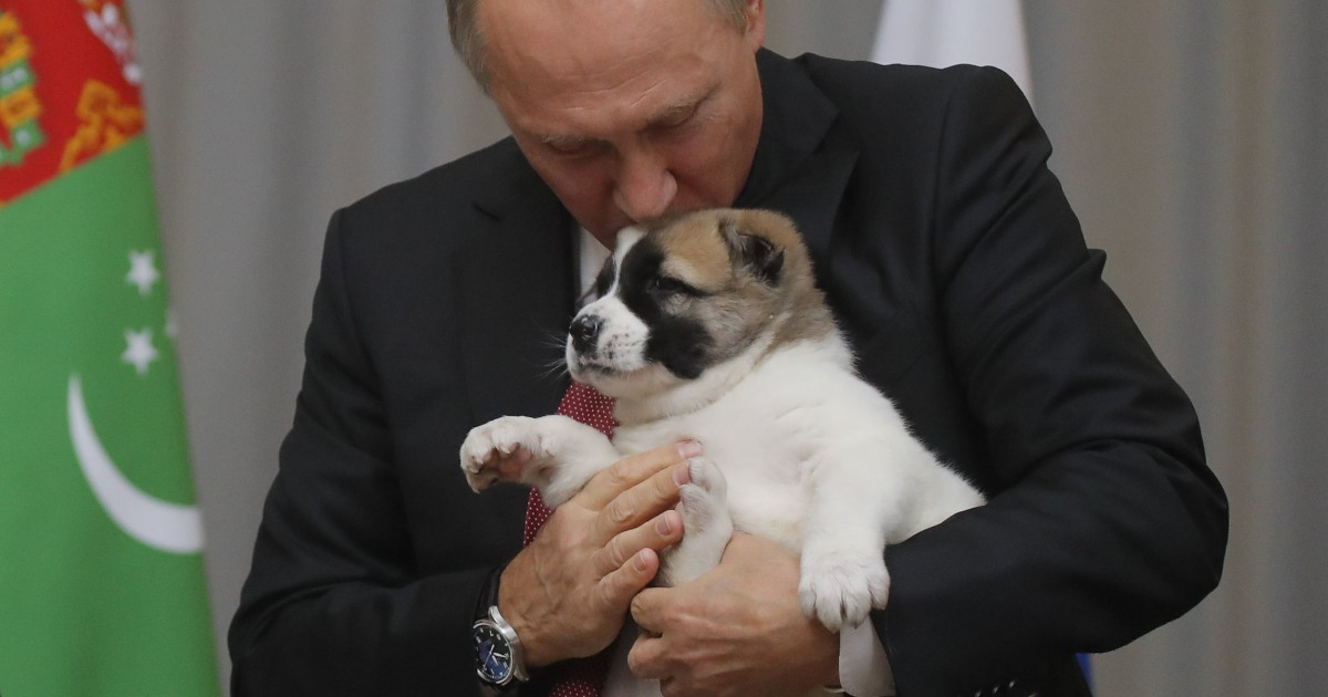 Putin was given a cute puppy for his 65th birthday