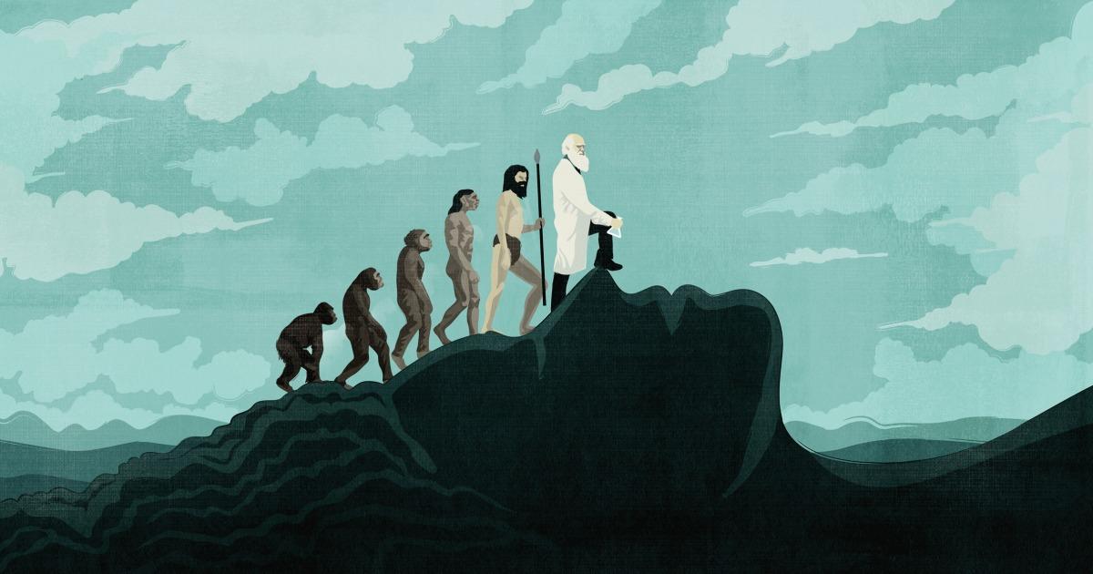 Opinion   How modern science failed women