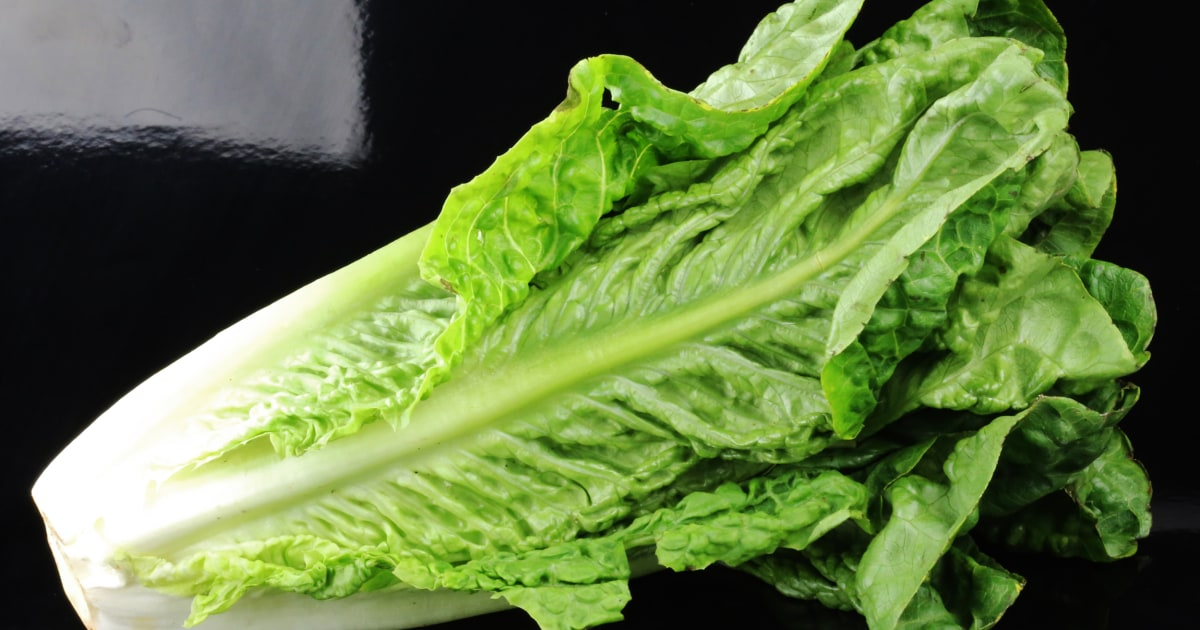 a report of the e coli epidemic in canada in 2000 It's too soon to blame romaine lettuce for an outbreak of e coli that's made 64   more than 40 in canada, the centers for disease control and prevention says   stay away from romaine lettuce, consumer reports advises.