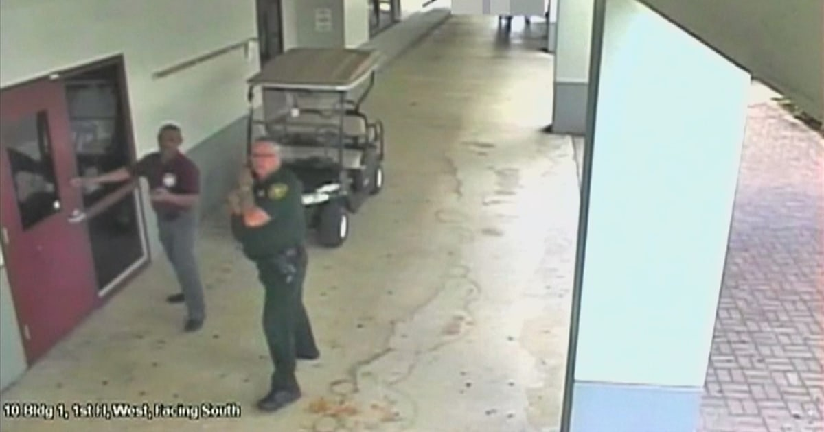 Charging ex-Parkland security officer Scot Peterson with child neglect could backfire, experts say thumbnail