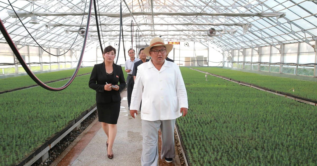 Top North Korean official says his country faces major food shortages, blaming weather and sanctions - NBCNews.com