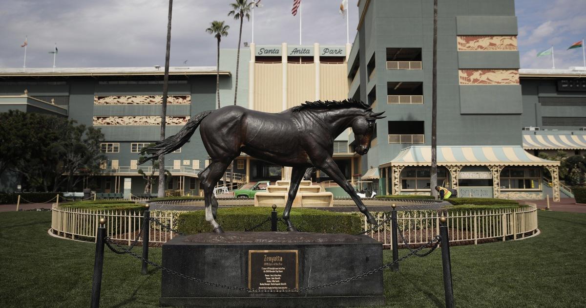 Another Horse Dies After Injury At Santa Anita Park 25th