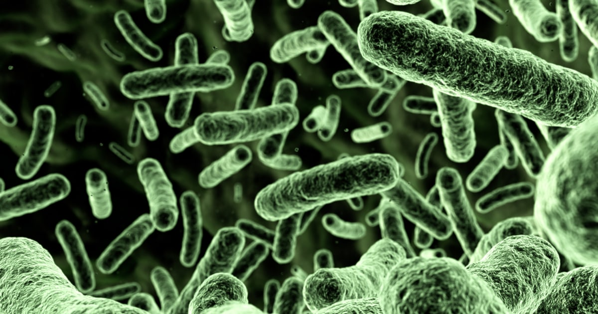 What to know about flesh-eating bacteria infections