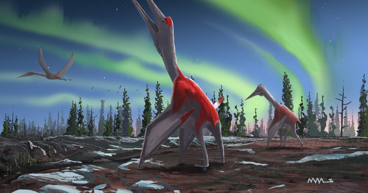 Millions of years ago, this 'frozen dragon' flying reptile as big as a fighter jet soared over Earth