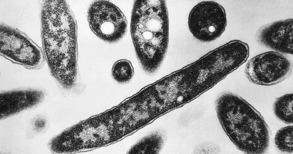 4th person dead in Legionnaires' outbreak tied to hot tubs at N.C. state fair