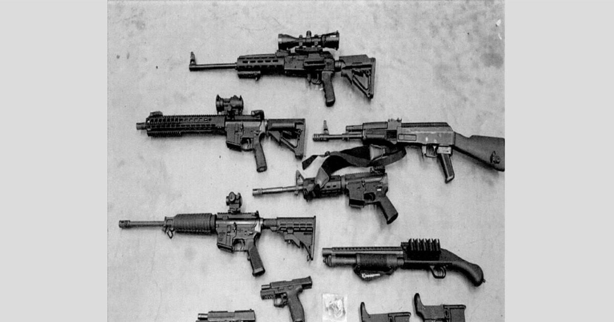 Τα όπλα που λαμβάνονται από την υποψία νεο-Ναζί ηγέτης είπε να προετοιμαστώ για