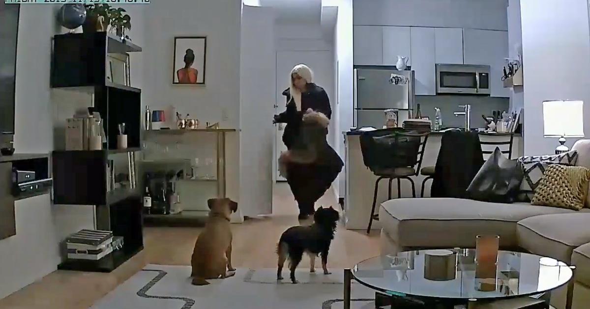犬ウォーカーに逮捕された後、ホームカメラを捕彼女の疑いが窃取からのお客様