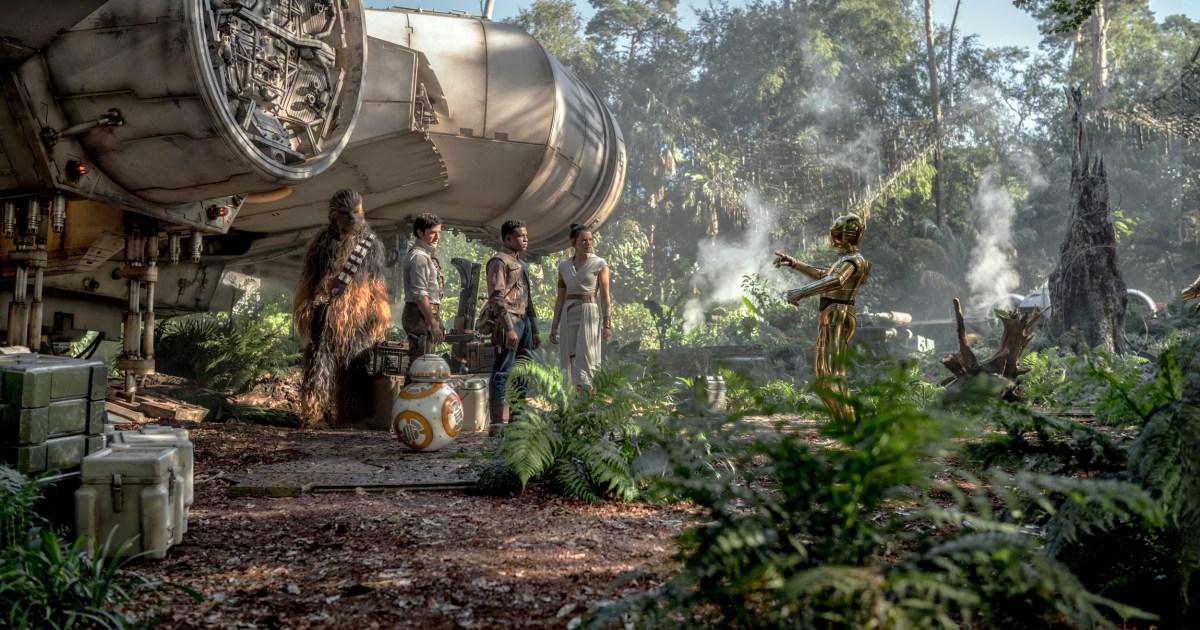 Damit Sie beobachtete (aber nicht Liebe) 'Rise of Skywalker.' Hier ist, was als Nächstes kommt.
