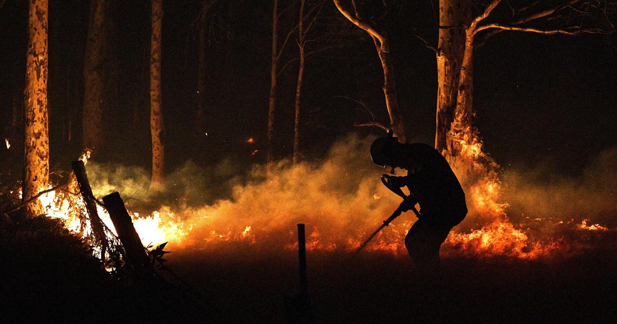 豪州の発送補助wildfireの町としての死者数が上昇