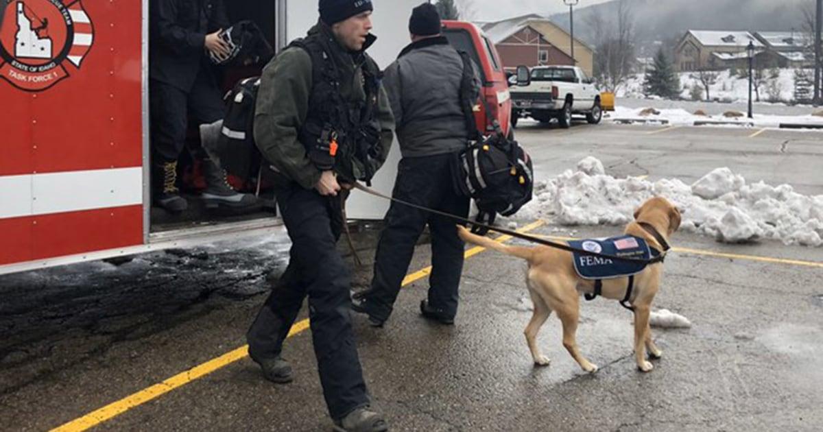 Mindestens 1 Toten, andere gerettet nach Lawine in Idaho Skigebiet