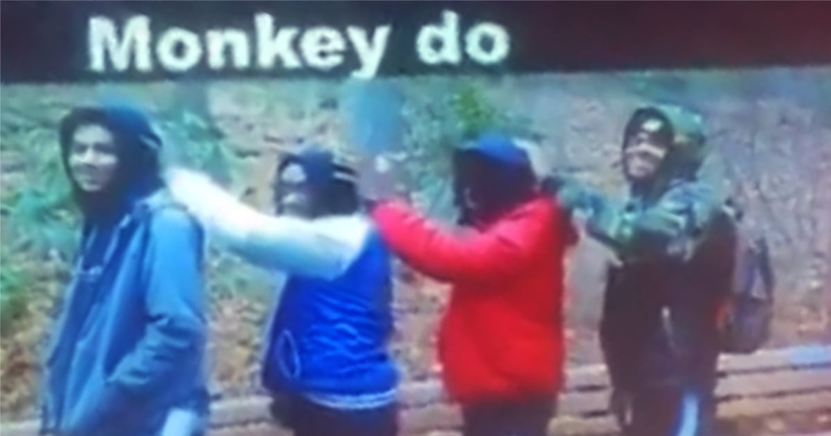 Black students in New York compared to monkeys in class photo by teacher, lawyer says thumbnail