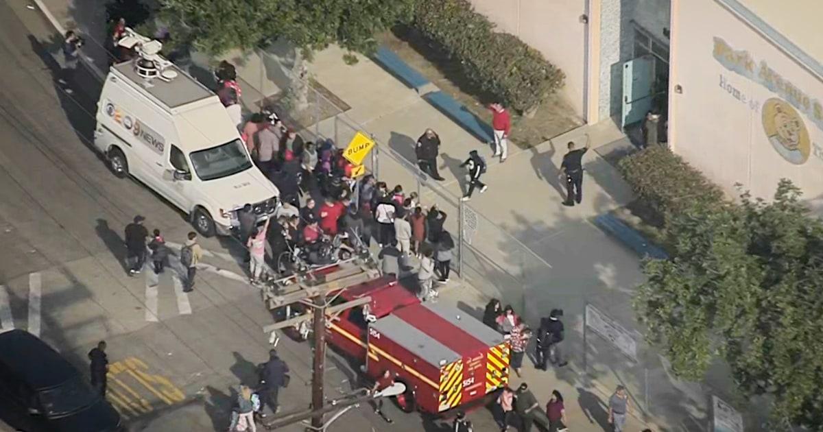 ジェットダン燃料L.A.学校の緊急時50人以上が負傷し