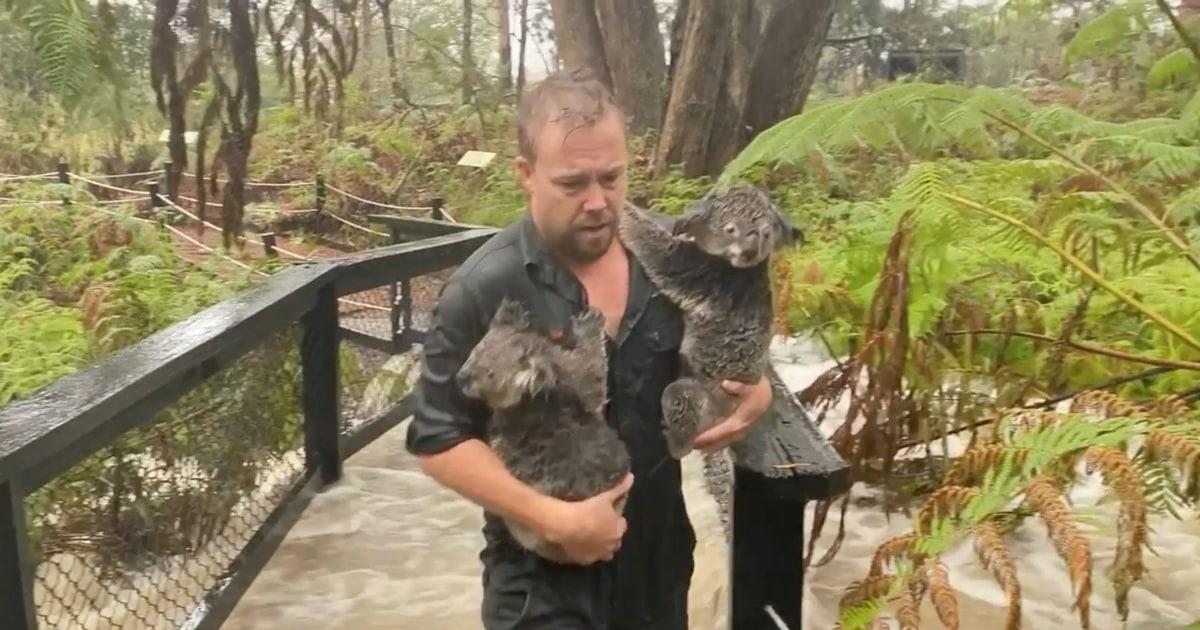 Heavy rain bringt Sturzfluten zu teilen von Ost-Australien die Buschfeuer wüten auf