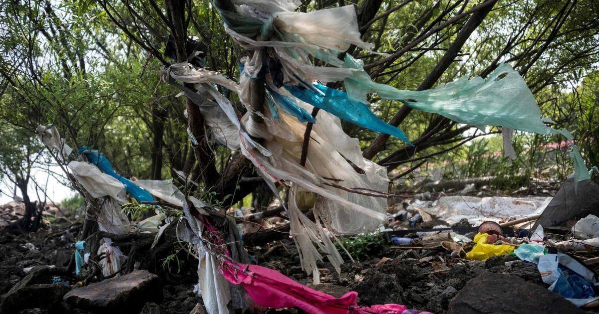 Της κίνας να απαγορεύσει τις πλαστικές σακούλες σε μεγάλες πόλεις μέχρι το τέλος του 2020