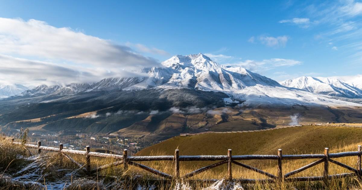 古代ウイルスの比較によるヒトで発見されたチベット氷河