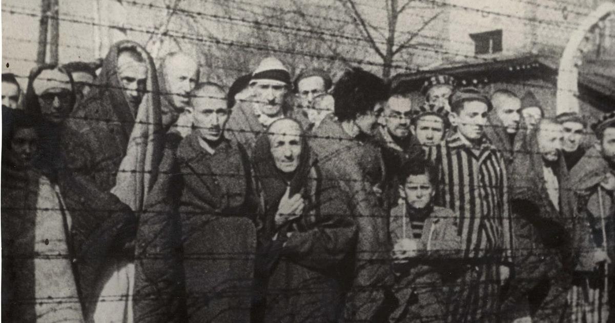'Never again':反ユダヤ主義びサージの思い出としてのホロコーストフェード