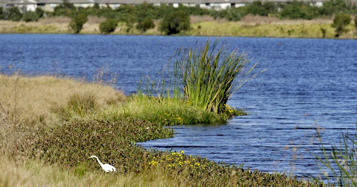 トランプロールバックが残すことができる水汚染脆弱な