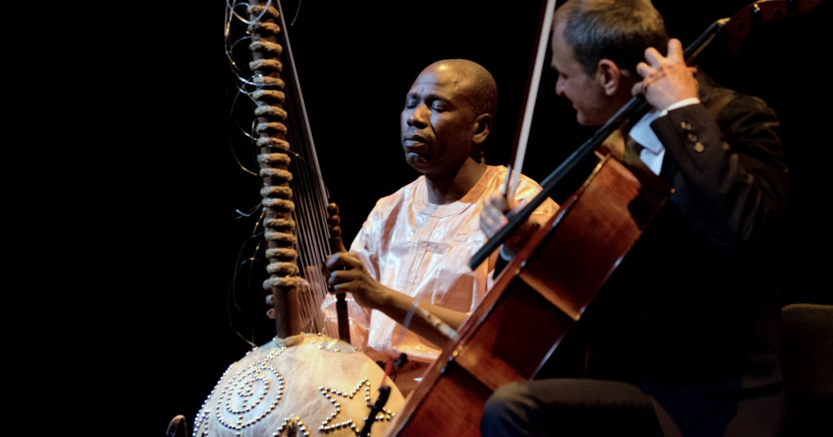 TSA destroys custom-made instrument, says Malian musician Ballaké Sissoko