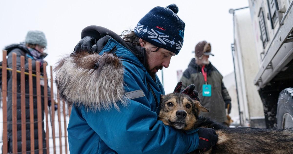 Treffen Quitte Berg, der Iditarod ist die erste trans-dog musher