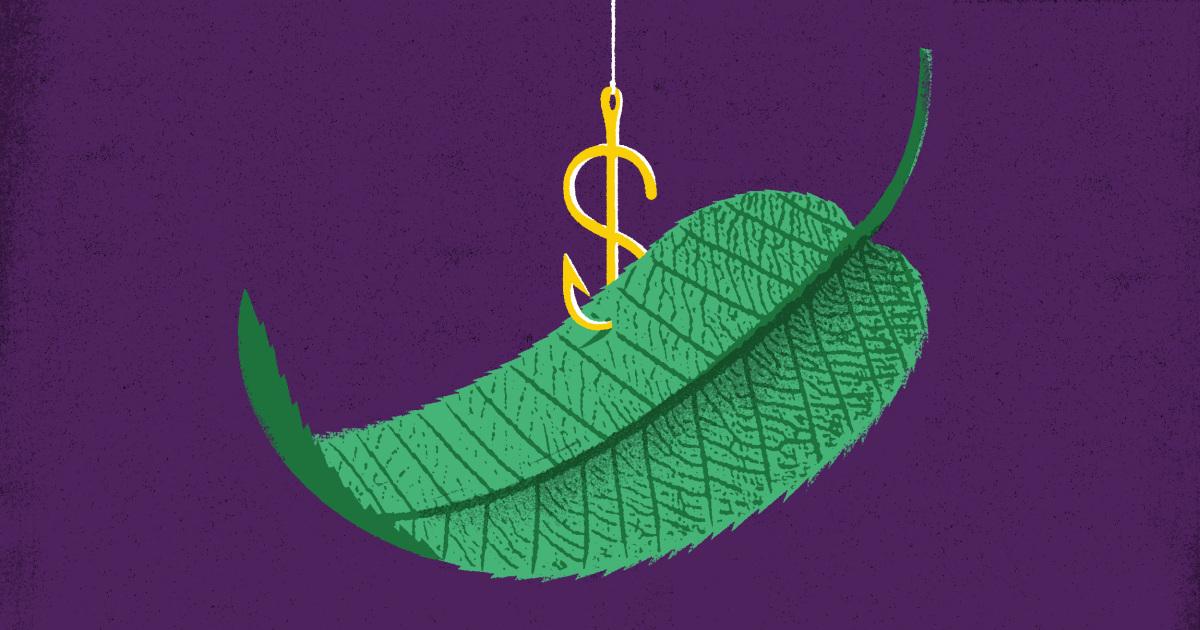 Hype, Hoffnung und Verheißung: Wie grüne Energie Betrug trick Investoren und scheffeln Geld