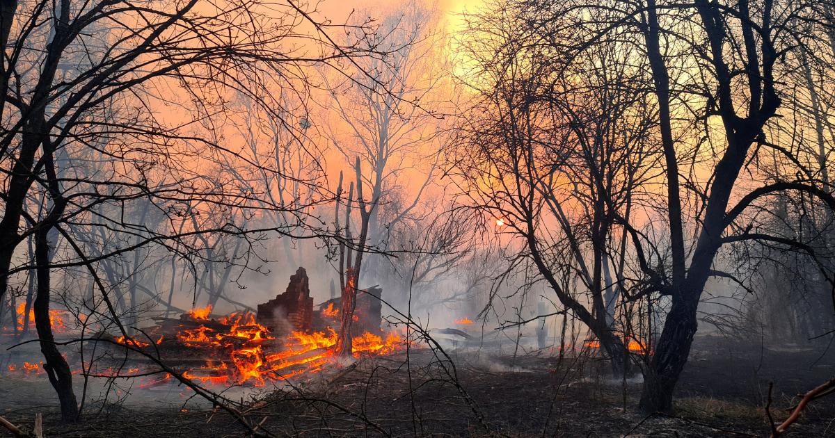 Το τσερνομπίλ επίπεδα ακτινοβολίας ακίδα δραματικά, καθώς οι δασικές πυρκαγιές καίνε στη ζώνη αποκλεισμού