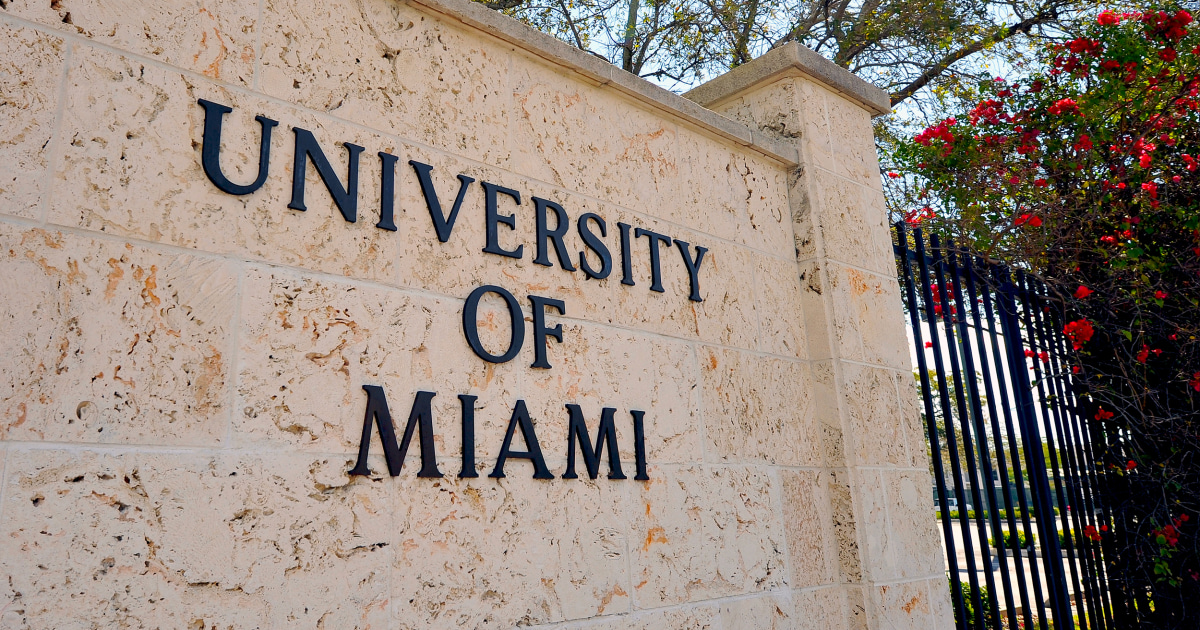 University of Miami professor resigns after reportedly sharing porn ...
