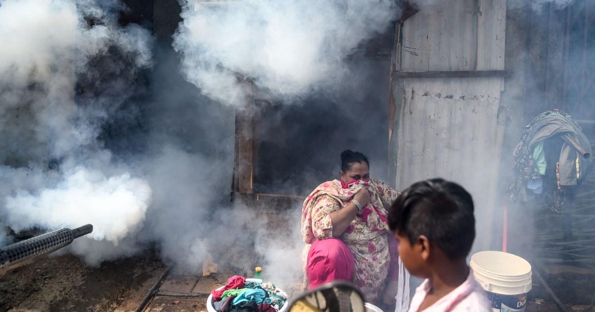 Dengue prevention efforts stifled by coronavirus pandemic, doctors warn - NBC News