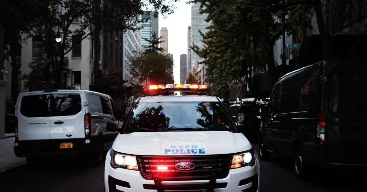 www.nbcnews.com: Critics fear NYPD Asian hate crime task force could have unintended consequences