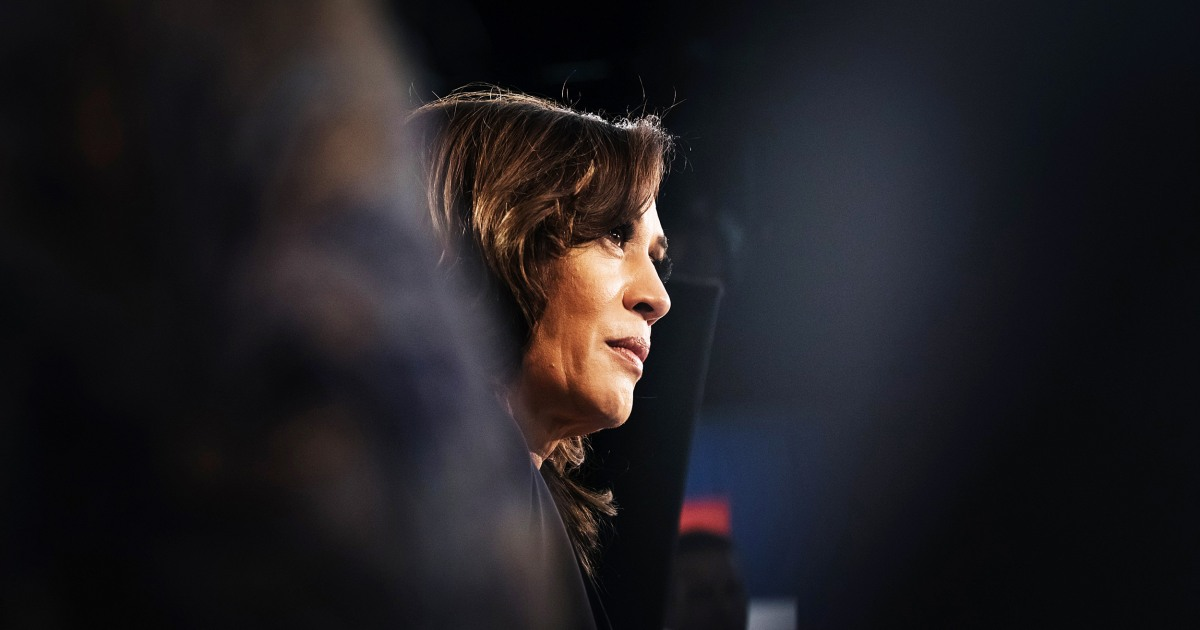 www.nbcnews.com: Why Kamala Harris' nomination is pushing this academic idea further into the mainstream