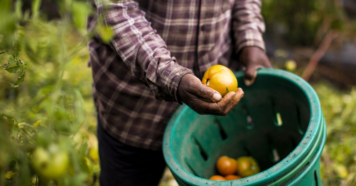 USDA issued billions in subsidies this year. Black farmers are still waiting for their share.