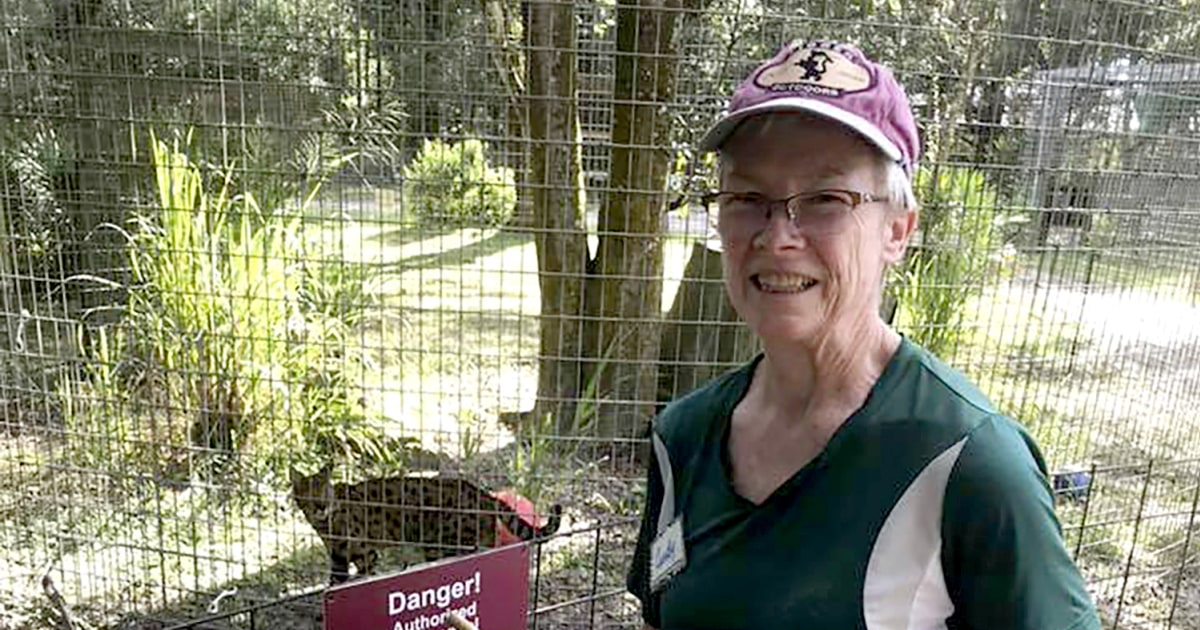 Volunteer's arm 'nearly tore' off during tiger attack at Carole Baskin's Big Cat Rescue