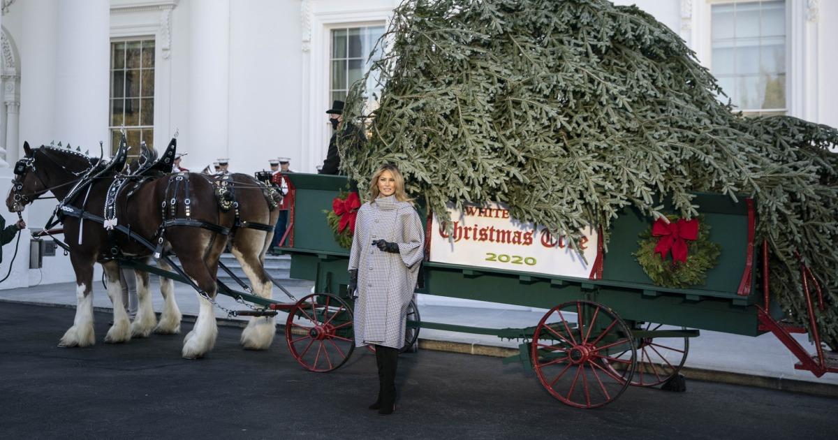 Dr. Natalie E. Azar Trump White House's Covid Christmas parties underscore a dangerous pandemic disconnect