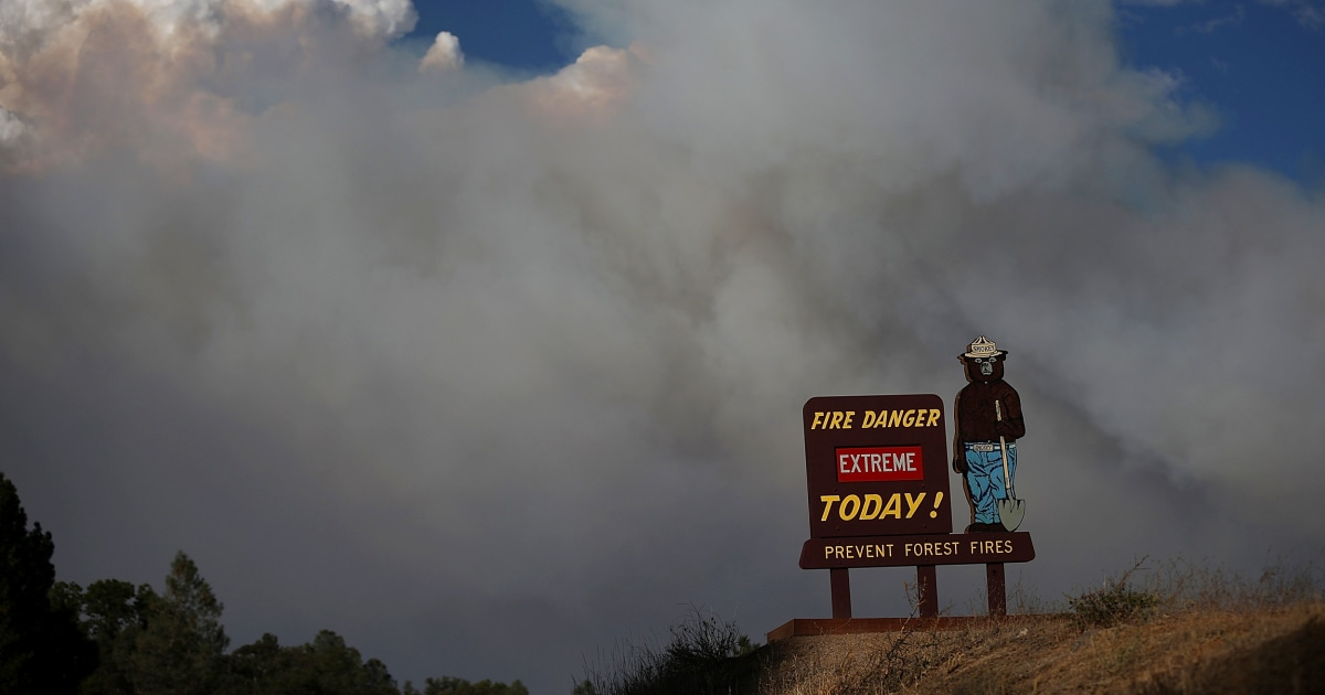 It's not just Covid relief: Smokey Bear, horse racing and the Dalai Lama included in government funding bill