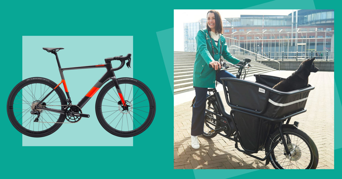 The 10 best electric bikes in 2021: Rad, Electra, Norco and more