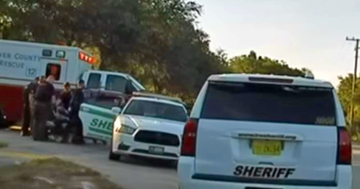 Florida man throws baby after vehicle chase authorities say – NBC News