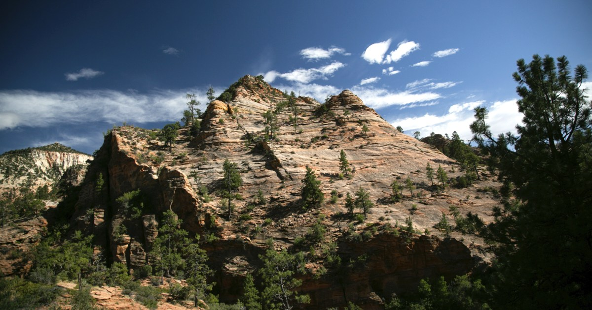 Woman dies after falling at least 50 feet from canyon in Utah park