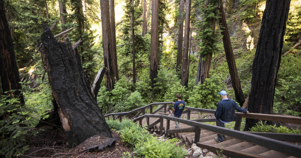 Popular Big Sur trail to reopen after 13-year wildfire restoration project