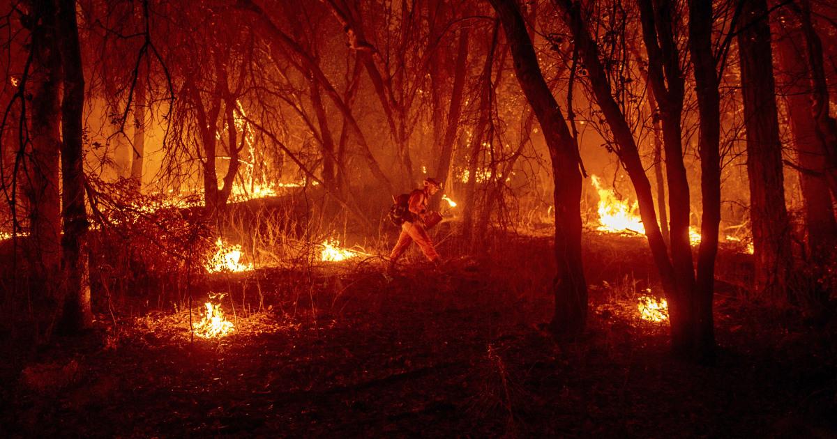 30-year-old former yoga teacher accused of arson in destructive Northern California blaze – NBC News